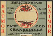 Inspected Brand label